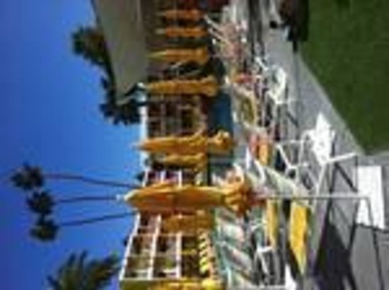The Saguaro Palm Springs, a Joie de Vivre Hotel: Pool area