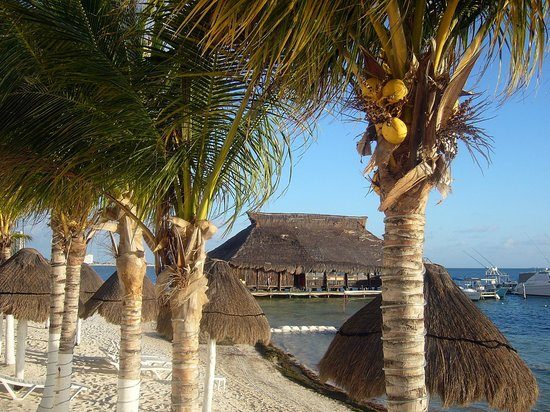 Holiday Inn Cancun Arenas:                   Vista de playa