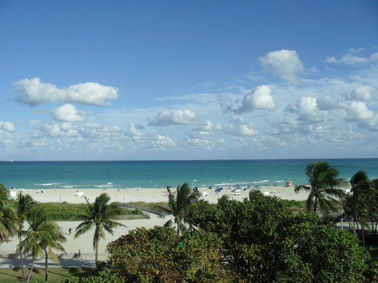 Congress Hotel South Beach:                   paradise views