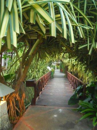 Natura Park Beach - EcoResort & Spa:                                     Bridge over the water                                  