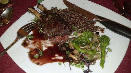 The Steamboat Grand:                   Elk Chops for dinner at a restaraunt at top of mountain