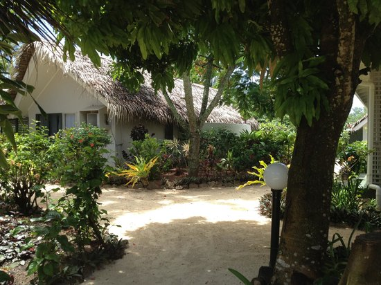 Manuia Beach Resort:                   Tropical gardens between the rooms