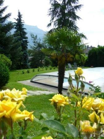 Les Irisynes: Roses au printemps