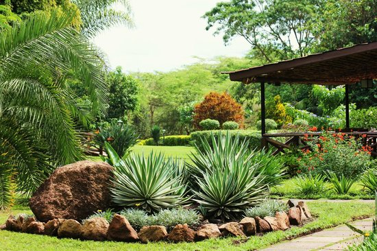 Arumeru River Lodge: The beautifully landscaped grounds at the lodge