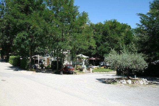Domaine Des Chenes:                                                       Une allée du camping