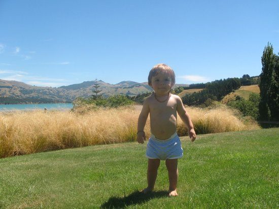 L'Abri:                   our son enjoying the grass