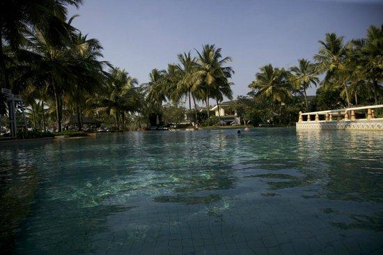 Taj Exotica Resort & Spa Goa:                   бассейн