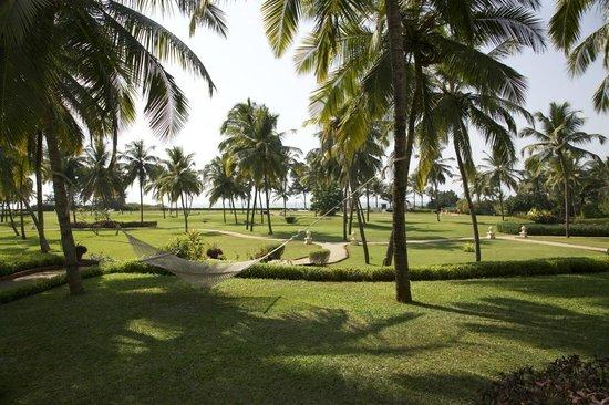 Taj Exotica Resort & Spa Goa:                   территория отеля