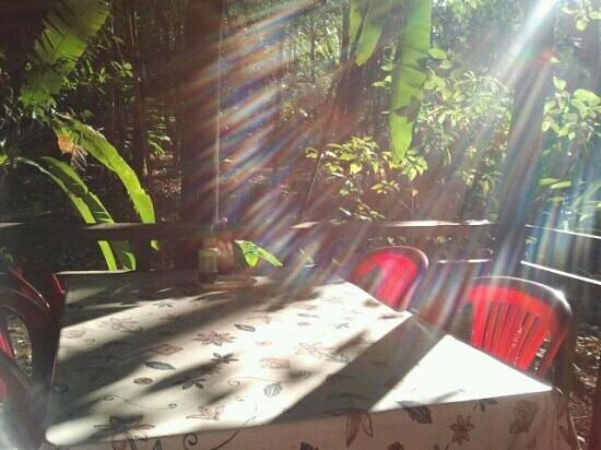 Yaklom Hill Lodge:                                     beim Breakfast/ Lunch oder Dinner