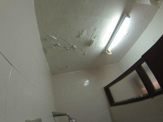 Goldkist Beach Resort:                   Flaking ceiling in toilet