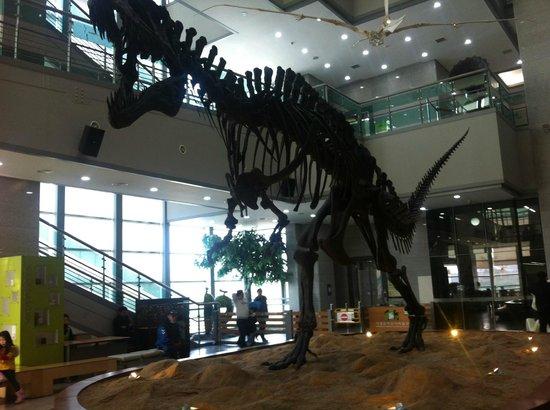 Seodaemun Museum Of Natural History