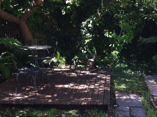 3 On Camps Bay Boutique Hotel:                   Garden Courtyard