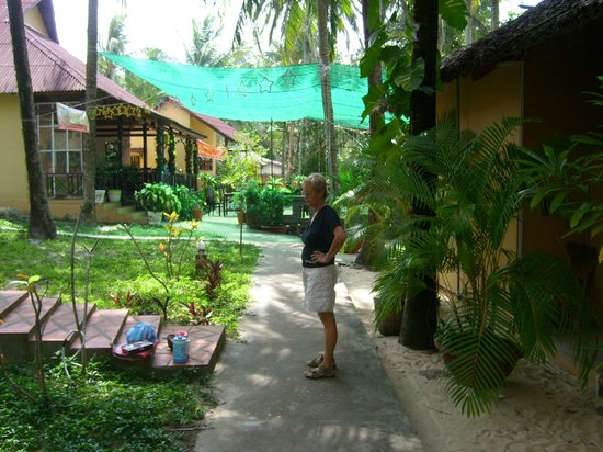 Sea Star Resort: les bungalows du rang 2