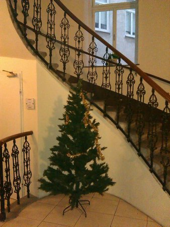 Hotel Carlton Opera:                   Лестница в номера