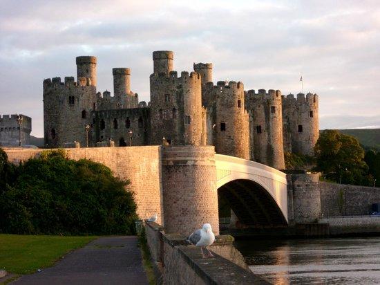 YHA Conwy:                                     Conwy Castle