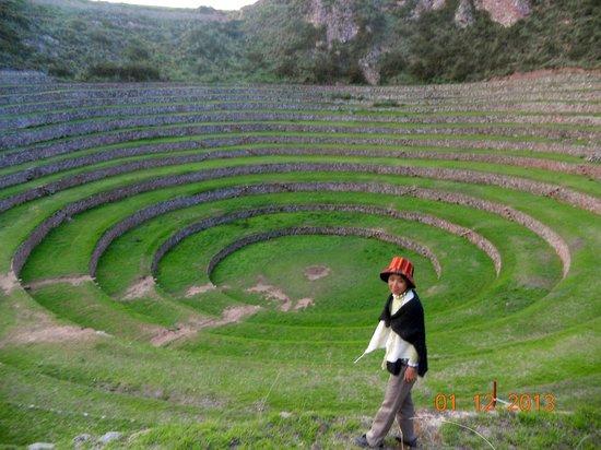 Terrazas De Cultivo Opiniones De Viajeros Sobre Cusco Peru