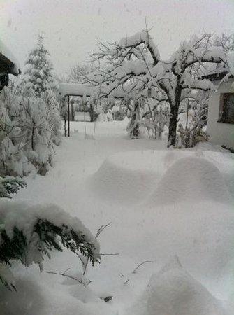 the best snow ever! Chalet Slovakias back garden