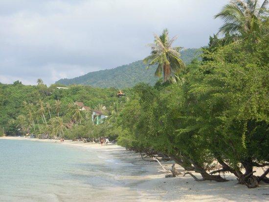 Sarikantang Resort & Spa :                   La plage de l'hotel