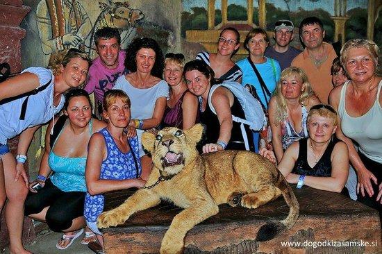 The Zala Villa Bali:                   Zala Villa Bali