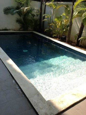 The Pavilion:                   private pool