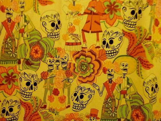 El Jardin de Frida:                   DETTAGLIO TENDINA EL COTORRO