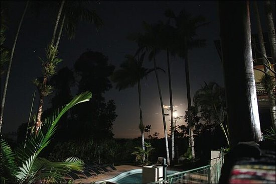Jackaroo Treehouse Mission Beach:                   in the night time
