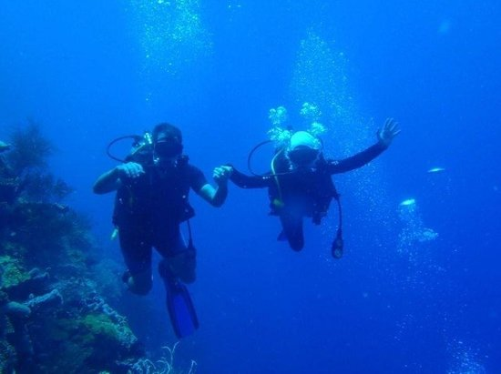Blue Season Bali at The Menjangan:                   First time diving