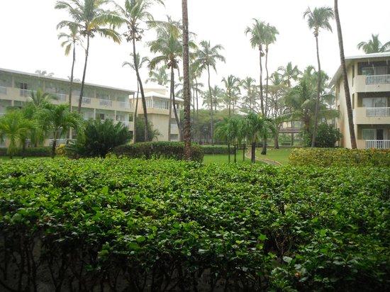 Sirenis Punta Cana Resort Casino & Aquagames:                   Gardens