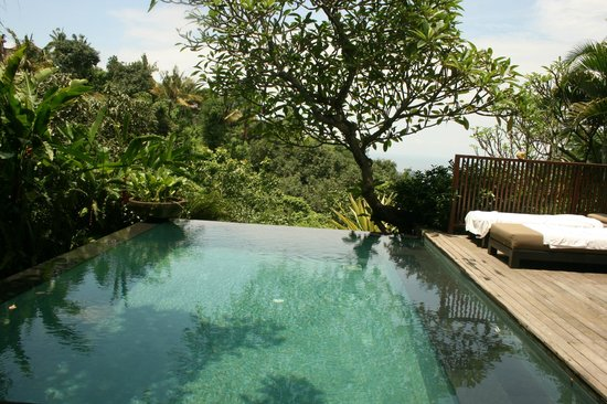 The Damai:                   View of the private pool villa