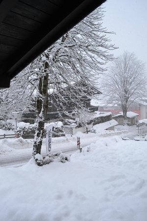 Pension Karlberger:                   View from quad room - ski school entrance can be seen on left