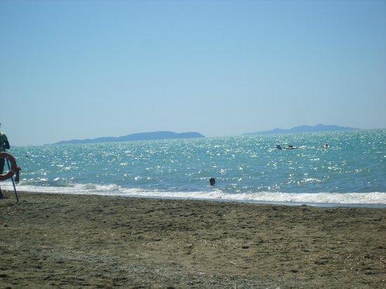 Marina di Bibbona, Włochy: la vicina spiaggia