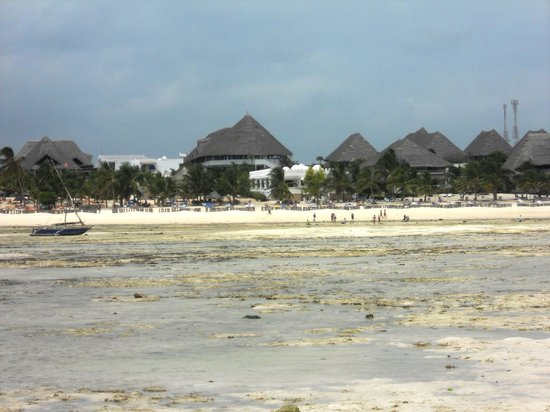 Jacaranda Beach Resort:                   bassa marea