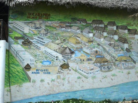Jacaranda Beach Resort:                   parete