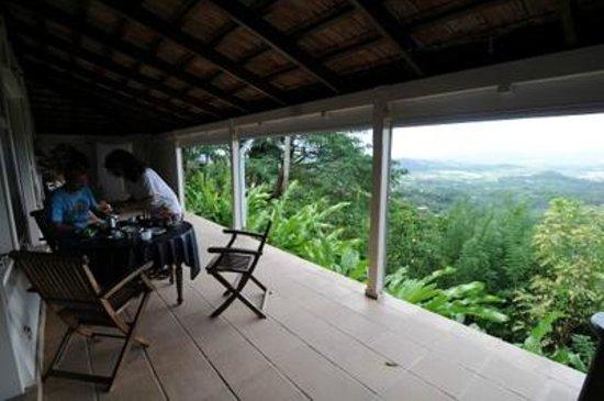 Sous Le Soleil des Tropiques:                   view from breakfast terrasse
