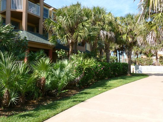 Disney's Vero Beach Resort: Condo Block