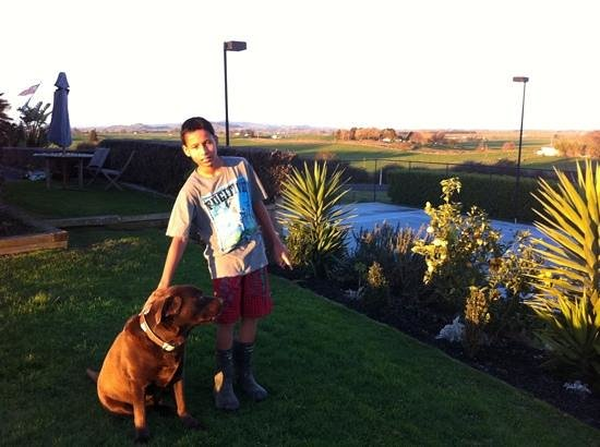 The Club House:                   my son loved dogs and pets