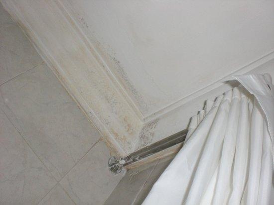 Hotel Riu Palace Punta Cana:                   Bathtub celing