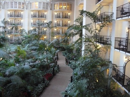 ‪‪Gaylord Opryland Resort & Convention Center‬:                   View from our room of the inside gardens