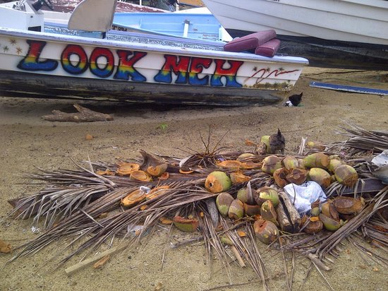 The Villas at Stonehaven:                   Coconuts and Boats at Stonehaven