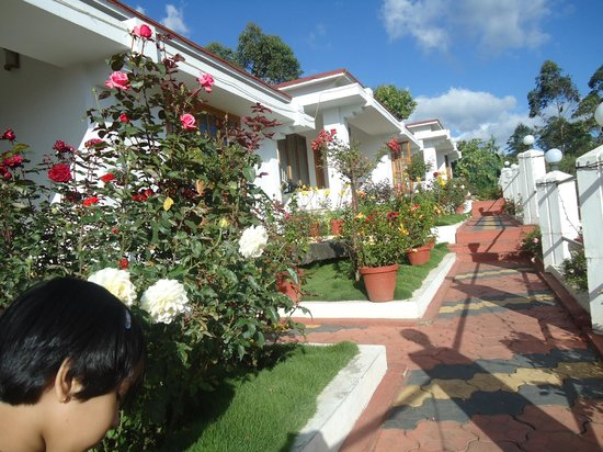 Elysium Garden Hill Resorts:                   the garden cottage