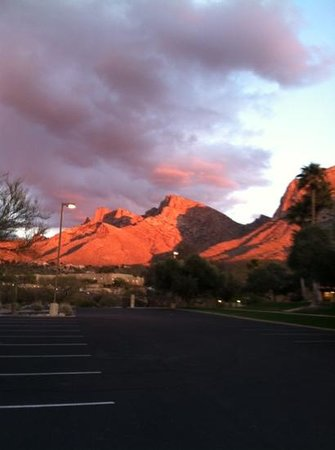 Hilton Tucson El Conquistador Golf & Tennis Resort:                   sunset hike