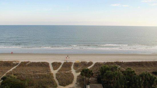Forest Dunes Resort: Beach access