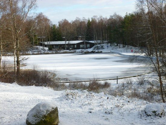 Macdonald Lochanhully Woodland Club:                                     Lake