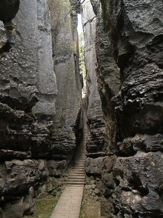 Yunnan Stone Forest Geological Park:                   Spaccature della roccia strettissime.