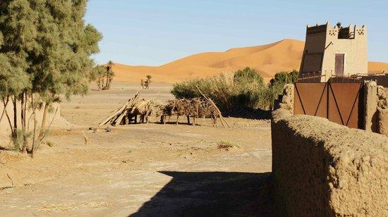 Kasbah Tamariste :                   uitzicht vanaf terras