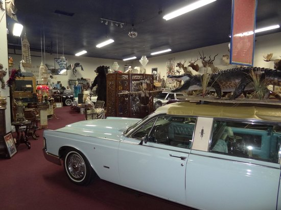 Carr's One of a Kind in the World Museum:                   Another view...