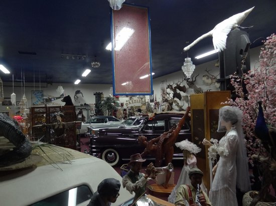 Carr's One of a Kind in the World Museum:                   and another...