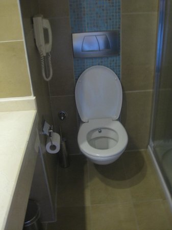 Fantasia Hotel De Luxe Marmaris:                   Toilet