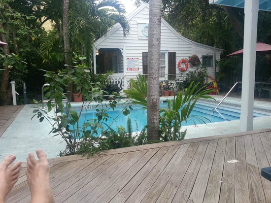 Blue Parrot Inn:                   Pool