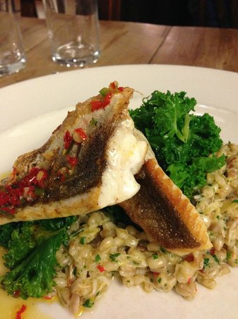 River Cottage Canteen:                                                       gurnard, chilli, crab& barley risotto & ka